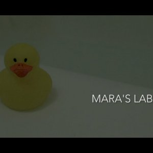 Mara's Labyrinth - A Short Film
